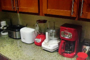 Small Appliances Picture By The Inadvertent Gardener on Flickr original at http://www.flickr.com/photos/inadvertentgardener/2588686453/